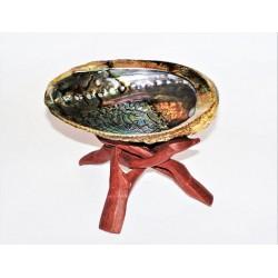 Kadidelnica - mušľa ABALONE veľká s dreveným stojančekom