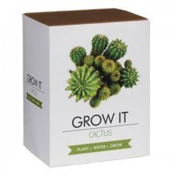 Vypestuj si sám – Kaktus